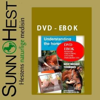 DVD & Ebok massasje - stretching mm